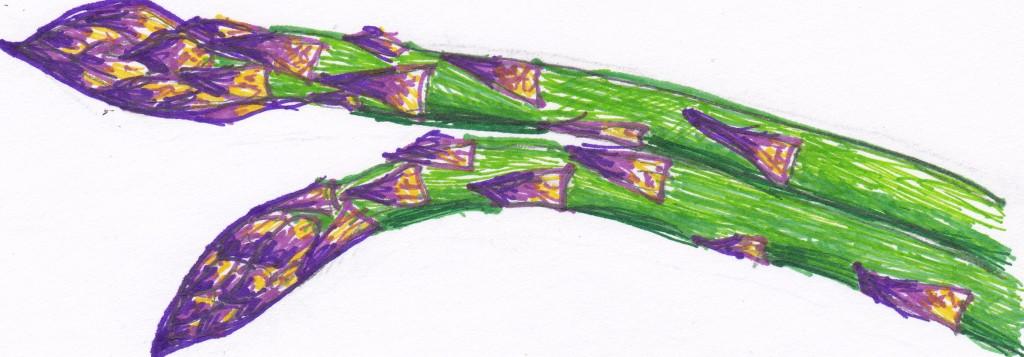 Pitchfork Diaries asparagus